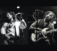 Ziggy Marley Image
