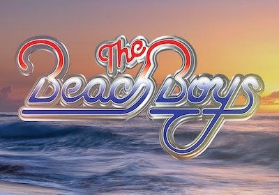The Beach Boys Image